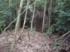 18_2jyuu_horikiri