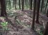 30_shukaku_minami_dankakugun_1