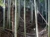 14_horikiri_yori_yagura_heki_1