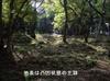 25_tenshudai