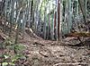 22_naka_kyodai_horikiri