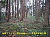 11_higasikaku