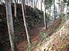 13_daikarabori_3